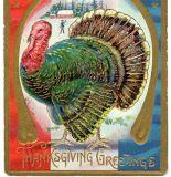Thanksgiving Greetings Turkey