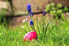 Happy Easter Egg Garden