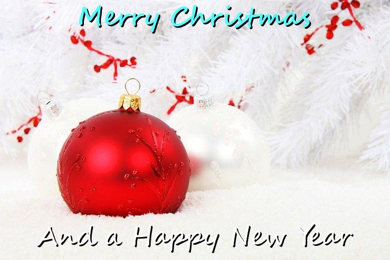Happy Festive Season